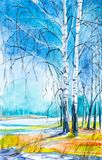 Russian forest landscape with beautiful birches in a clearing with melting snow.  stock illustration