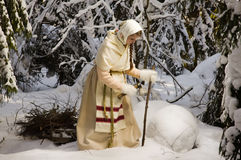 Russian girl in the winter woods Stock Photography