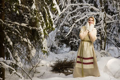 Russian girl in the winter woods Stock Photo