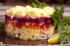 Russian herring salad Royalty Free Stock Photo