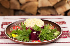 Russian herring salad Stock Photo