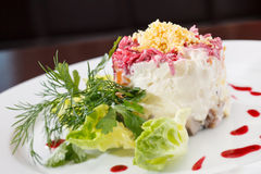 Russian Herring Salad Stock Photos