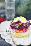 Russian herring salad Royalty Free Stock Image