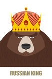 Russian King. Bear in Golden Crown. Vector illustration Royalty Free Stock Photo