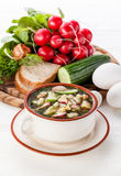 Russian kvass Cold Soup Stock Photography