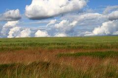 Russian landscape Stock Photos