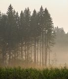 Russian landscape in the Kaluga region. Stock Image