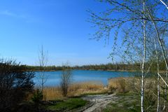 Russian landscape with lake and trees on the bank. Early spring.  stock photos