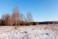 Russian  lanscape  in frozen day Royalty Free Stock Photography