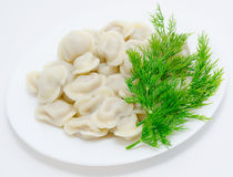 Russian meat dumplings Royalty Free Stock Images