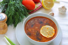 Russian meat soup Solyanka Stock Photography