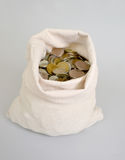 The Russian metallic currency lies in a bag. Bag of money Stock Image