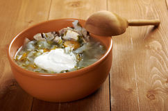 Russian national cabbage soup Royalty Free Stock Images
