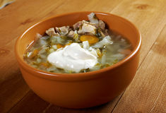 Russian national cabbage soup Stock Photos