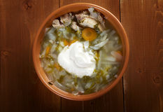 Russian national cabbage soup Royalty Free Stock Photography
