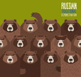 Russian national demonstration.  Bears came out on strike. Russian national demonstration.  Bears came out on strike Royalty Free Stock Photo