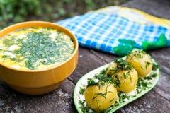 Russian national dish - Boiled potatoes and okroshka Royalty Free Stock Image