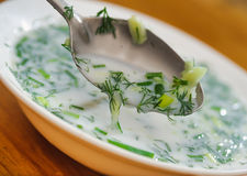 Russian national dish - okroshka Royalty Free Stock Photo