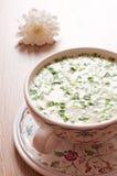 Russian national dish - Okroshka with green onions Stock Photo