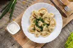 Russian National food. Top view of traditional belorussian meal. Dumplings in white plate with green and sour. Food concept.  stock photography