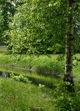 Russian nature Stock Photo