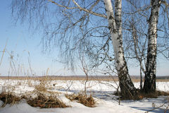 Russian nature Stock Photo