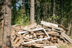 Dump of wooden debris on the forest clearing, Moscow suburbs, Russia. Russian nature-lovers often don`t dispose the wastes by the proper way, therefore, the Stock Photography