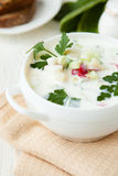 Russian Okroshka in a white tureen Royalty Free Stock Images