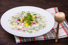 Russian okroshka with yogurt and vegetables, food Royalty Free Stock Photo