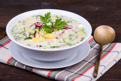 Russian okroshka with yogurt and vegetables, food Royalty Free Stock Photos