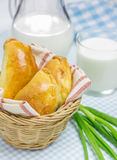 Russian pastries (pirogi). Filled with eggs and green onion Royalty Free Stock Image