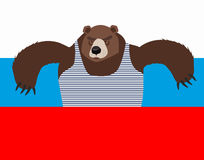 Russian patriot bear and Russia flag.. Wild animal. World stereotype Royalty Free Stock Photos