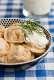 Russian pelmeni Royalty Free Stock Photography
