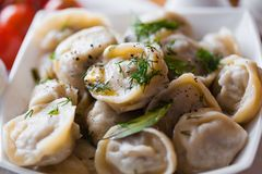 Russian pelmeni Royalty Free Stock Photo