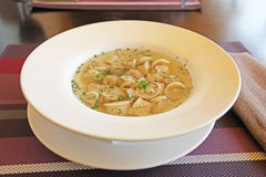 Russian Pelmeni broth Royalty Free Stock Photos