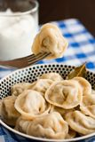 Russian pelmeni (meat dumplings) Royalty Free Stock Photos