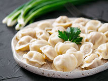 Russian pelmeni, ravioli, dumplings with meat Stock Photos