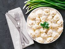 Russian pelmeni, ravioli, dumplings with meat Royalty Free Stock Photo
