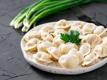 Russian pelmeni, ravioli, dumplings with meat Stock Images