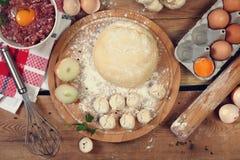 Russian pelmeni Royalty Free Stock Images