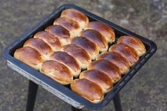 Russian pirozhki homemade baked pasties photo pies royalty free stock photo