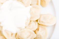 Russian pork dumplings pelmeni. Royalty Free Stock Photo