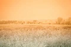 Russian provincial natural landscape in gloomy weather. Toned.  stock image