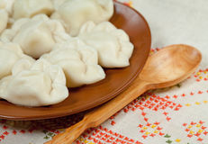 Russian ravioli royalty free stock images