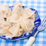 Russian ravioli with meat Stock Photos