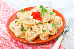 Russian ravioli with meat Royalty Free Stock Photos