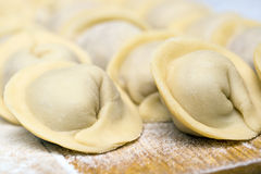 Russian ravioli with meat Royalty Free Stock Photography