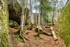 Russian reserve Stolby Nature Sanctuary. Near Krasnoyarsk. Central pillars of Russian reserve Stolby Nature Sanctuary. Near Krasnoyarsk Royalty Free Stock Photo