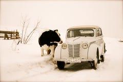 Russian retro car Stock Photos