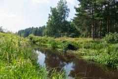 Russian River Nerskaya. River summer 06 13 2016 stock image